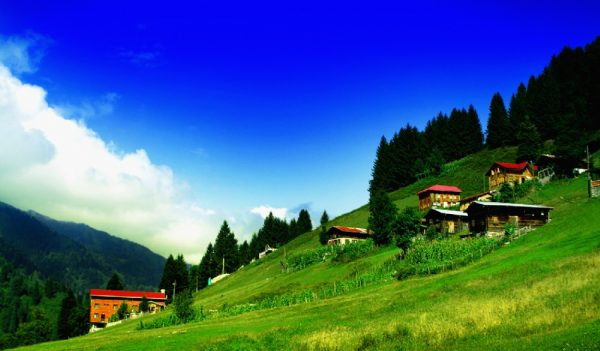 Tourist program 9 days 8 nights in Trabzon1