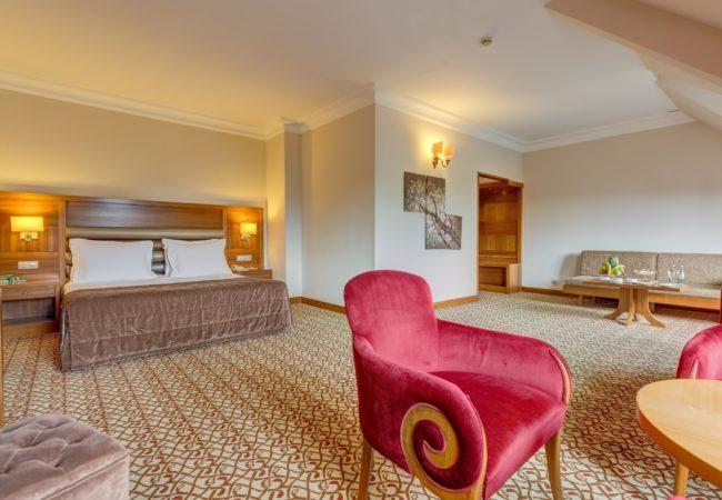 BUYUK ABANT HOTEL 3